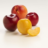 SA Stonefruit Product Photography (3)