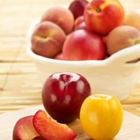 SA Stonefruit Product Photography (8)