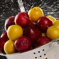 SA Stonefruit Product Photography (9)