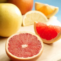 South African Grapefruit (11)
