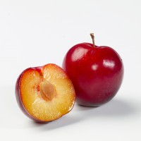 plums-46